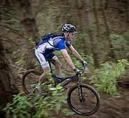 biking-in-the-woods